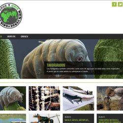 Verde y Gris - verdeygris.com